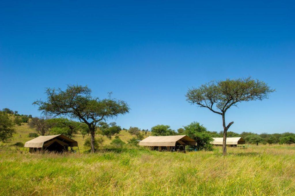 Serengeti Bush Lodge