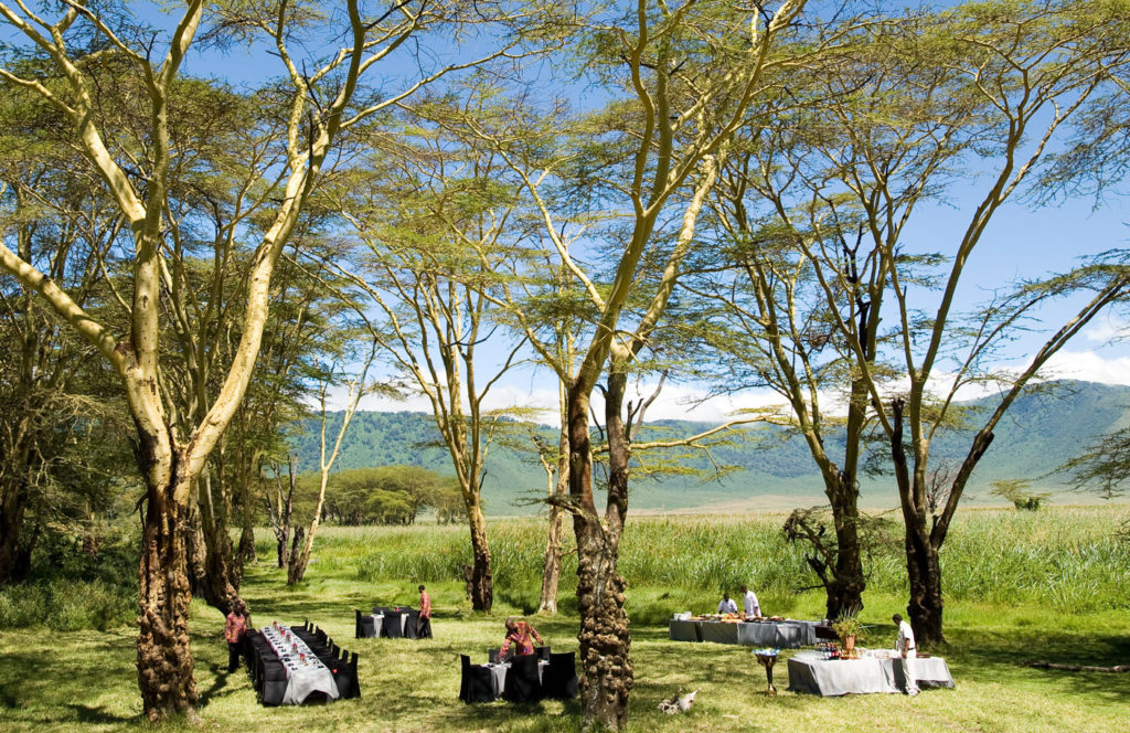 Ngorongoro Bush dinner