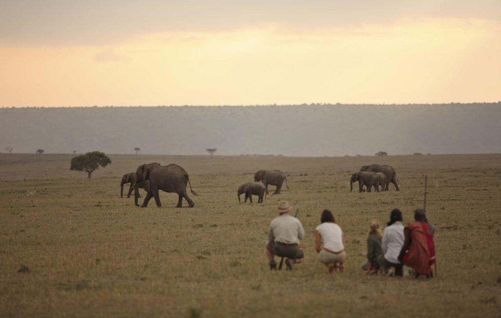 Serengeti Wandelsafari