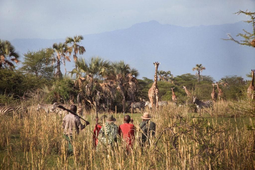 Tarangire National Park Wandelsafari