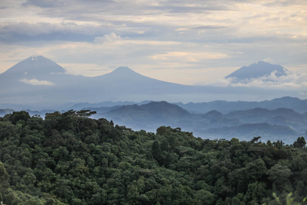 bwindi-impenetrable-forest-uitzicht