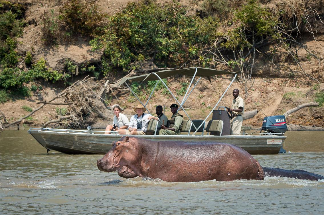 zambia bootcruise nijlpaard