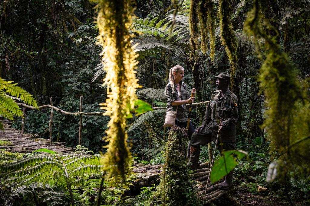 bwindi-impenetrable-forest-hike