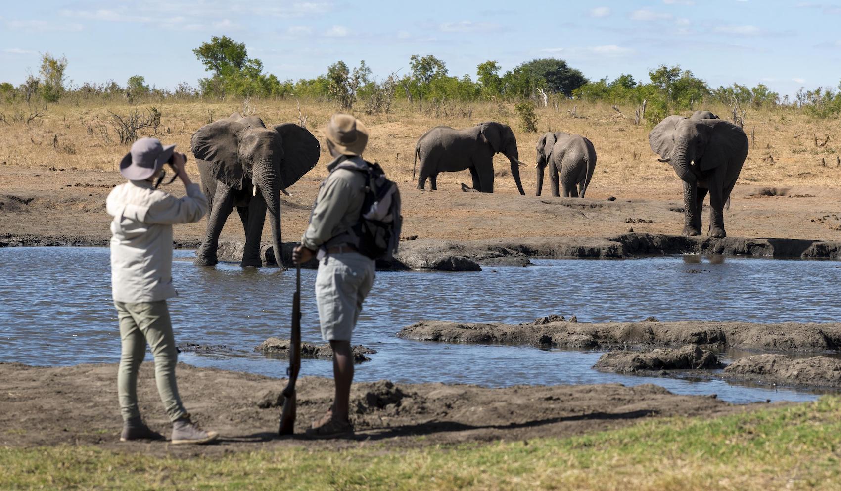 wandelsafari zimbabwe